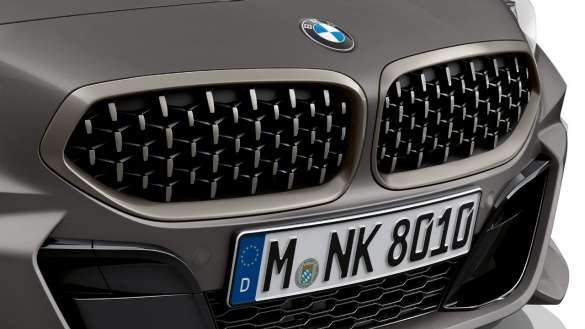 BMW Niere in Mesh-Design